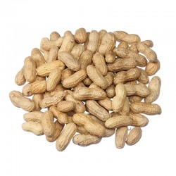 Peanuts (In Shell)