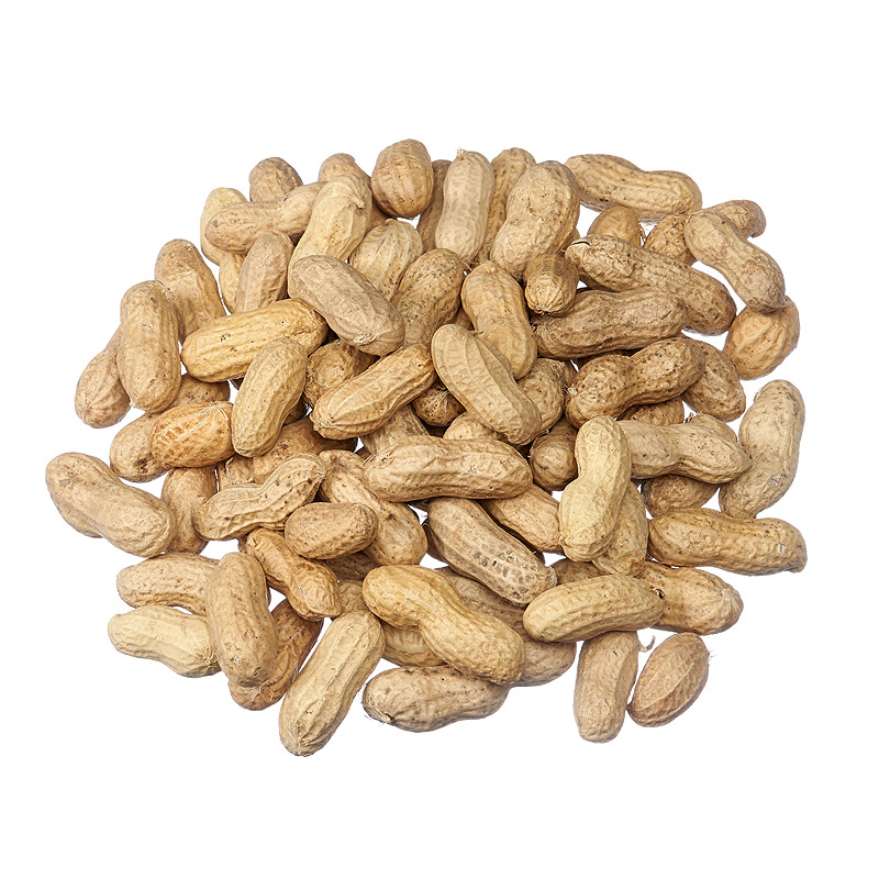 peanut shell fertilizer That have fertilizer applied to them such as corn and the peanut in shell) and 50% oil content  production of biofuel crops in florida: peanut 4.