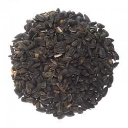Sunflower Black Oil