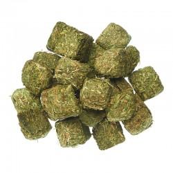 Alfalfa Cubes 16%