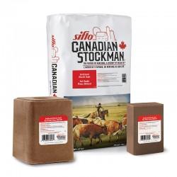 Red Iodized Salt, Blocks & Licks - Sifto Canadian Stockman