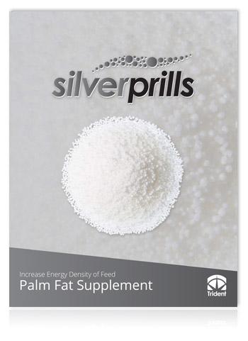Silver Prills - Brochure Thumbnail