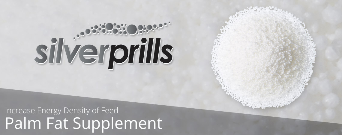 Silver Prills - Palm Fat Supplement - Title