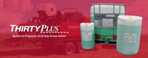 Thirty Plus - Hay Preservative