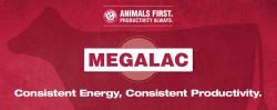 blog-megalac-consisten-energy-consisten-productivity-title
