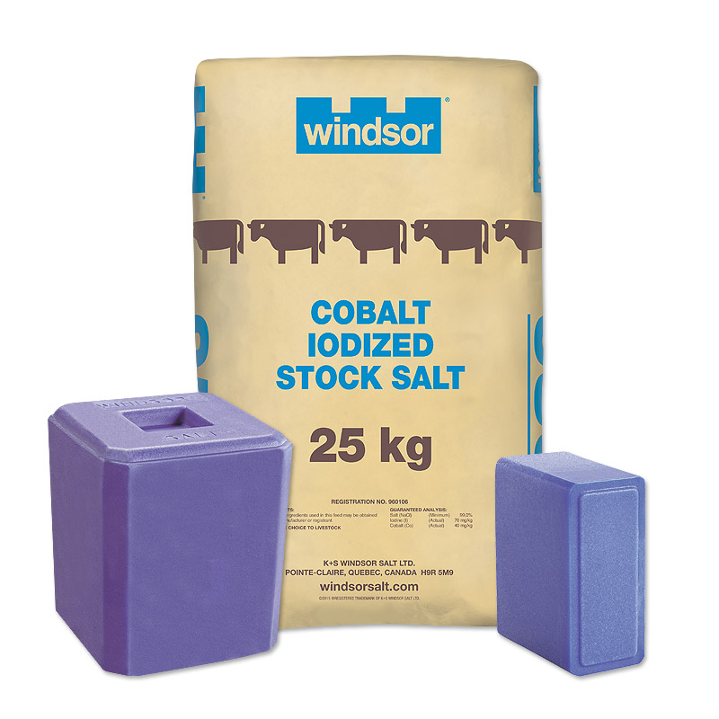 Cobalt Iodized Stock Salt, Blocks & Licks – Windsor Salt
