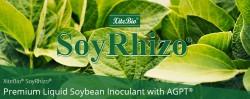 blog-xitebio-soyrhizo-soybean-inoculant-title